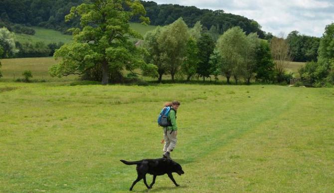 dog-walking-holidays-uk.jpg