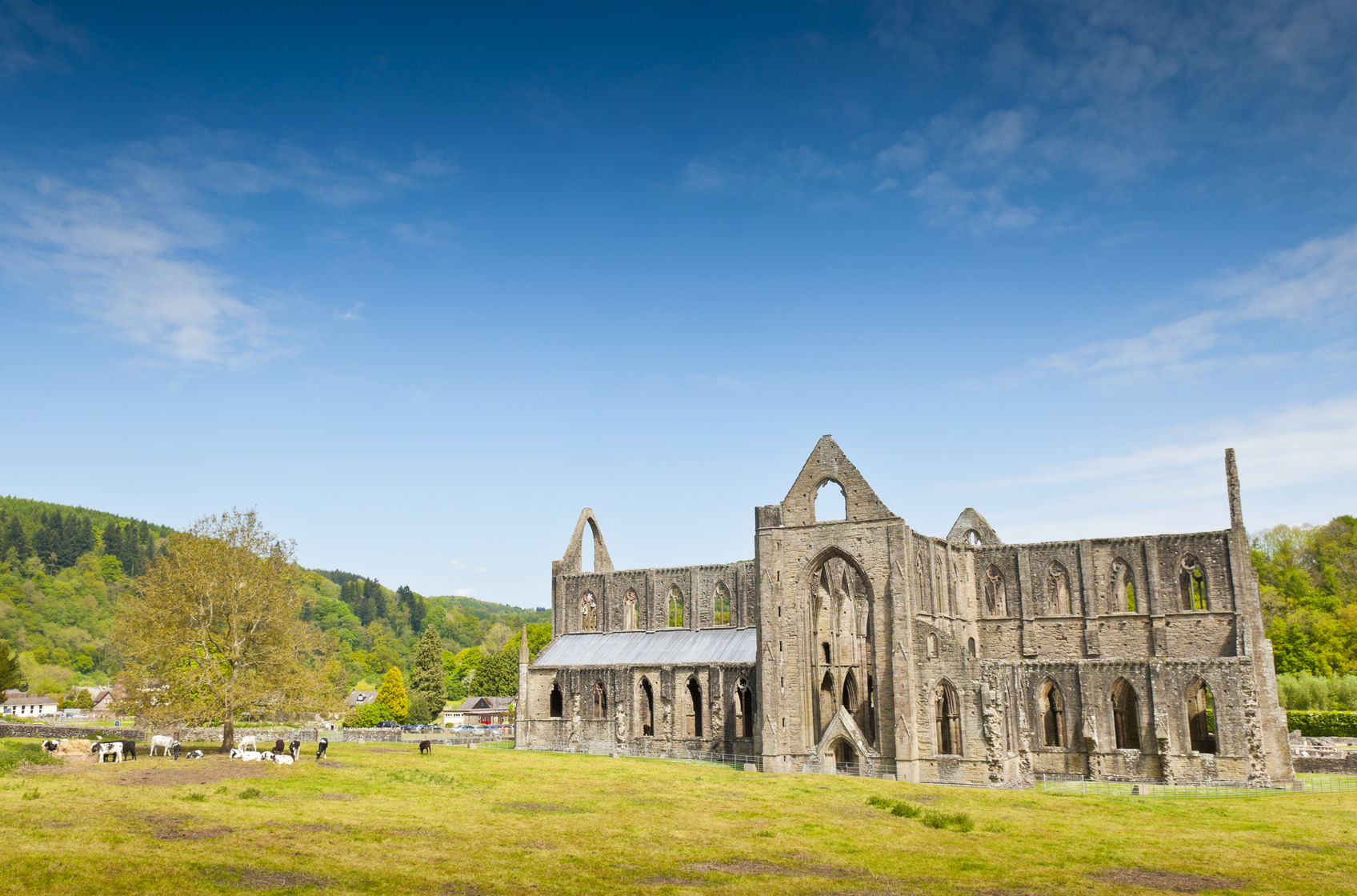Ancient Ruins, Tintern Abbey, Wales, UK