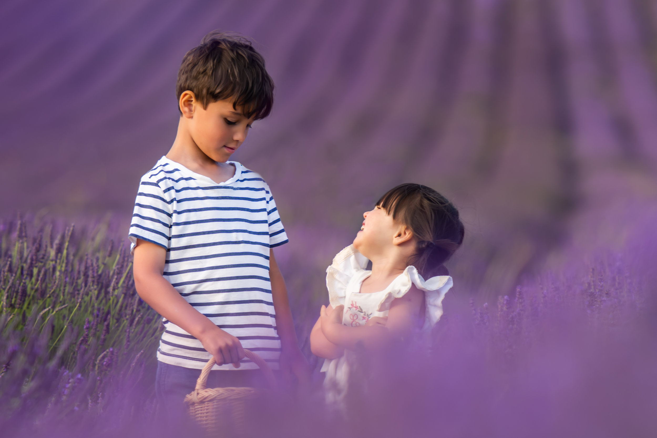 hitchin_lavender_photography.jpg