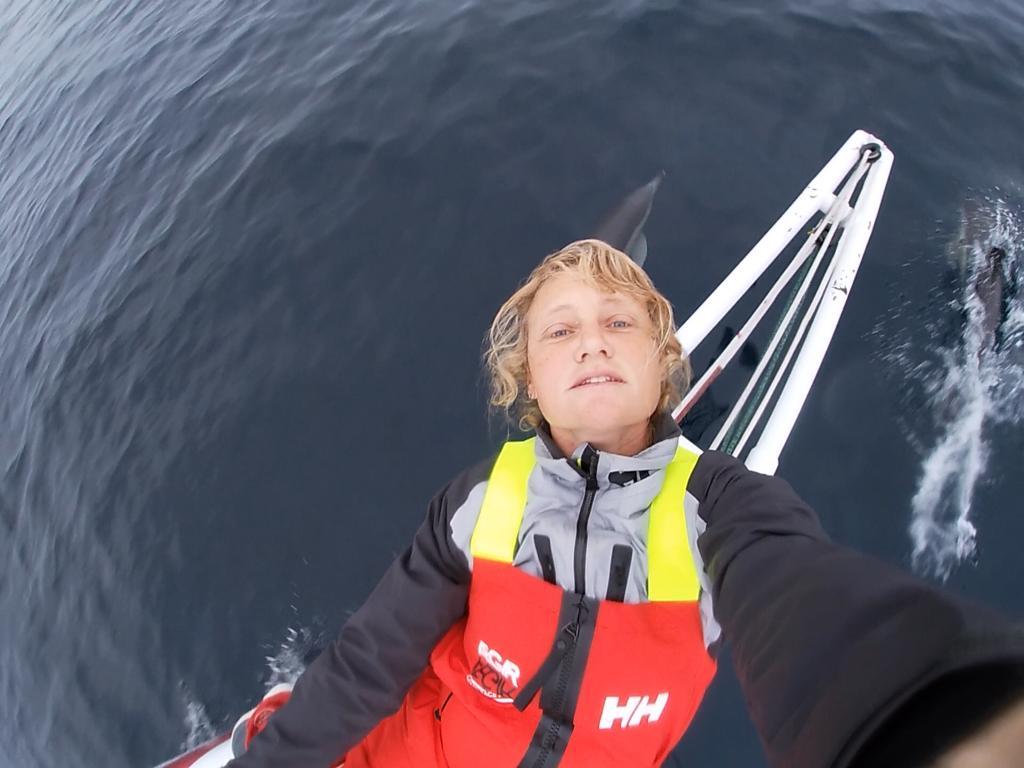 Dolphin selfie!