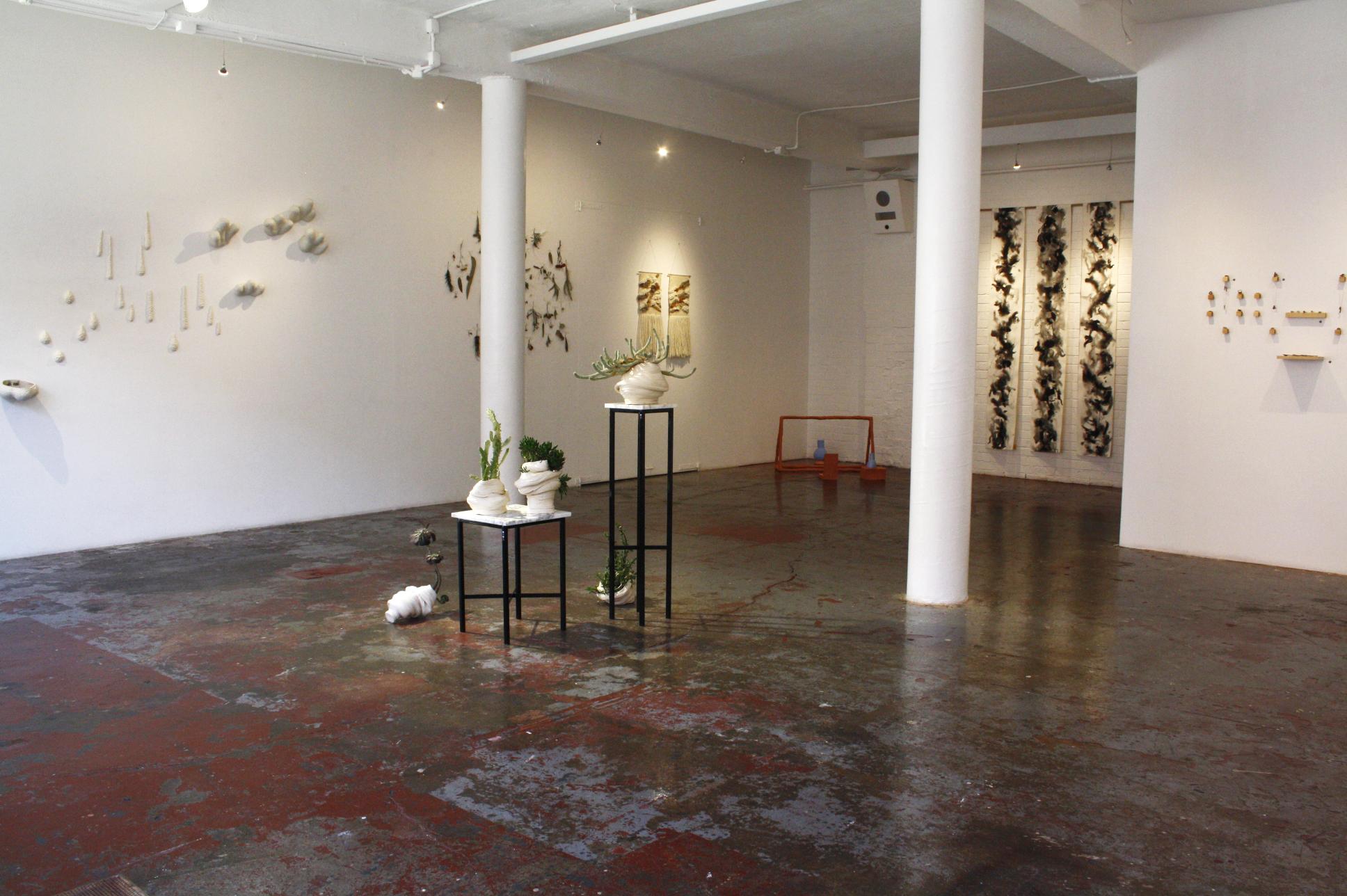 Installation view,  Wonky,  2016, Tinning Street Presents. Photo: Caitlin Shearer