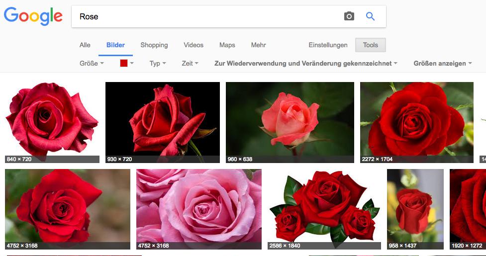 Das Ergebniss zeigt nun frei verwendbare rote Rosen. Werfen wir einen genaueren Blick auf den ersten Treffer...