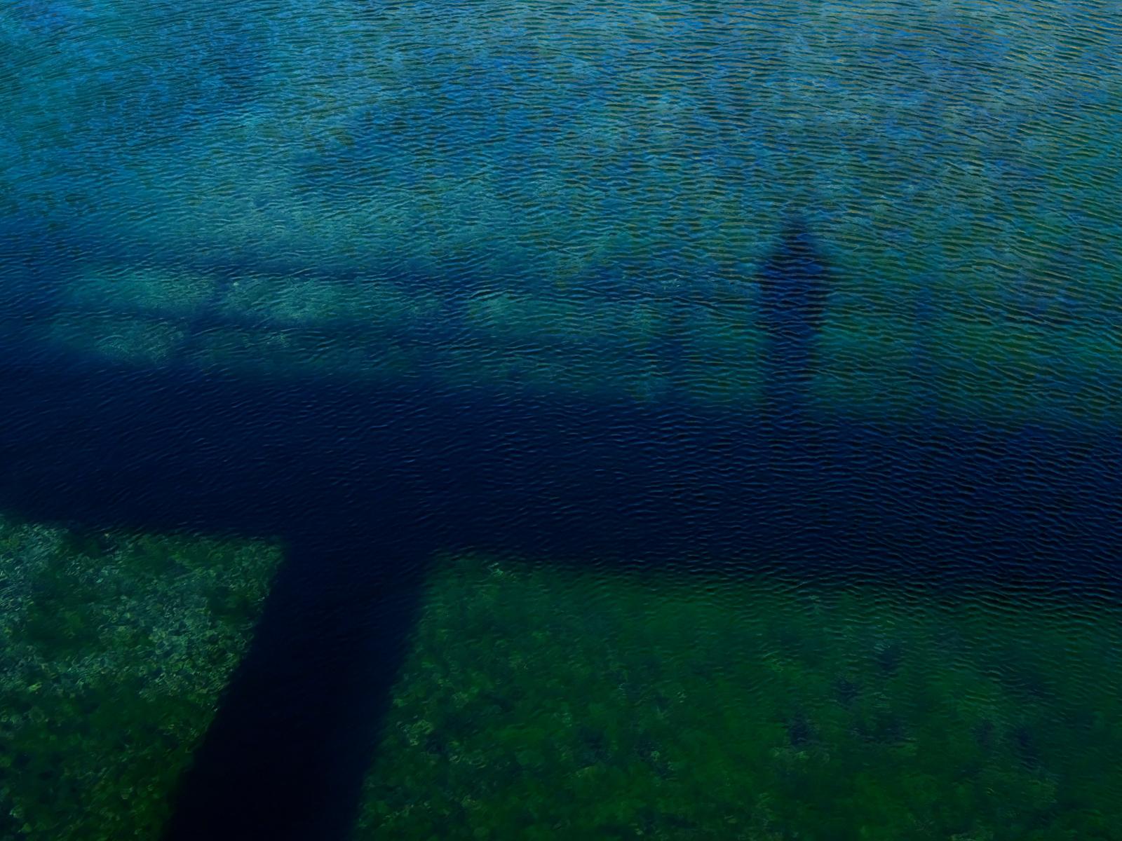 LS-20100922-MClaire02_0124-2-web.jpg