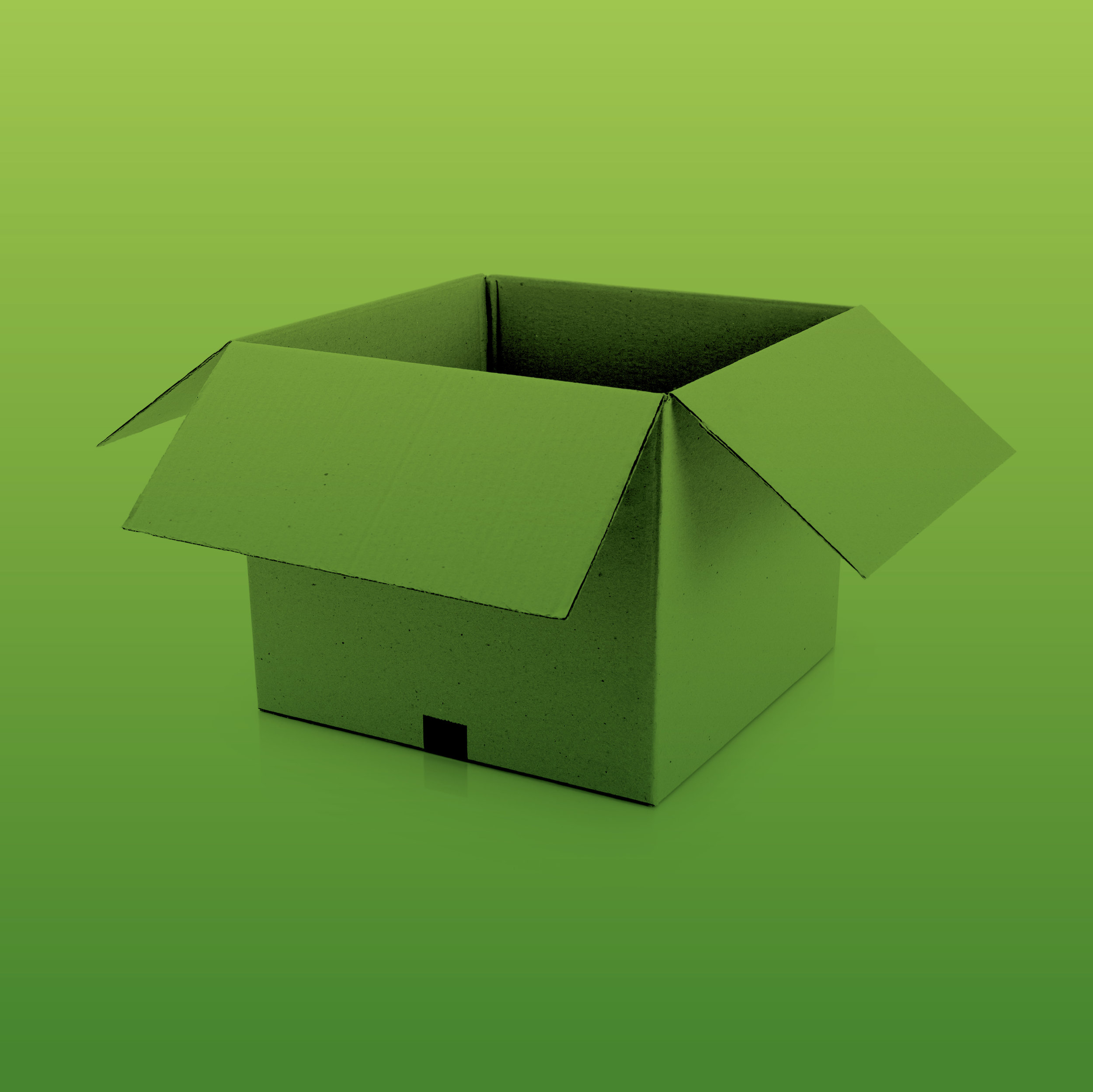 pledge five - cardboard