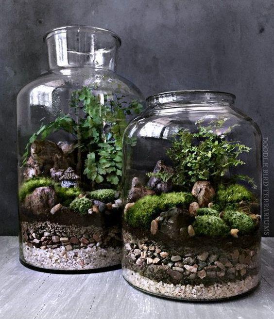 Create a Recycled Glass Terrarium -