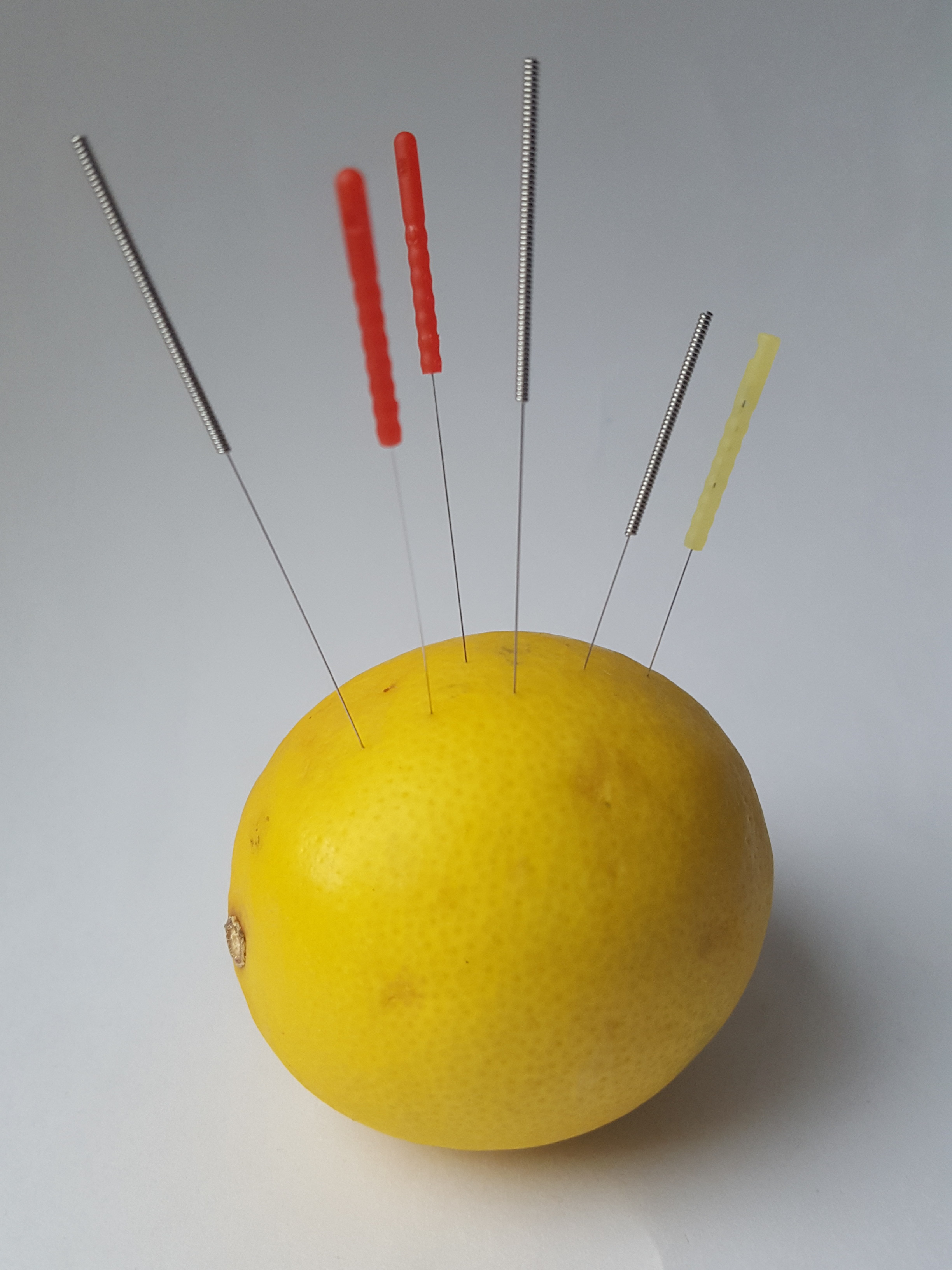 Different sized needles displayed in a lemon.