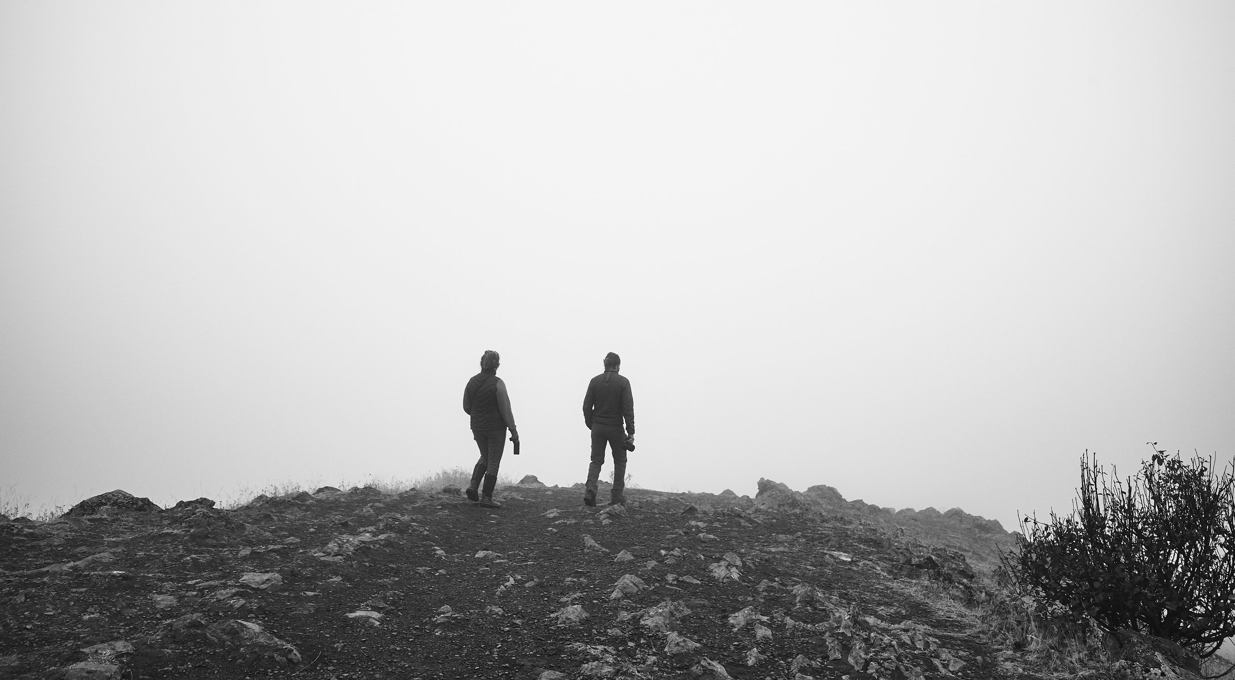 Lost in the fog.