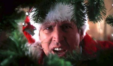 christmas-vacation-movie-cast-quotes-facts-1543601630.jpg