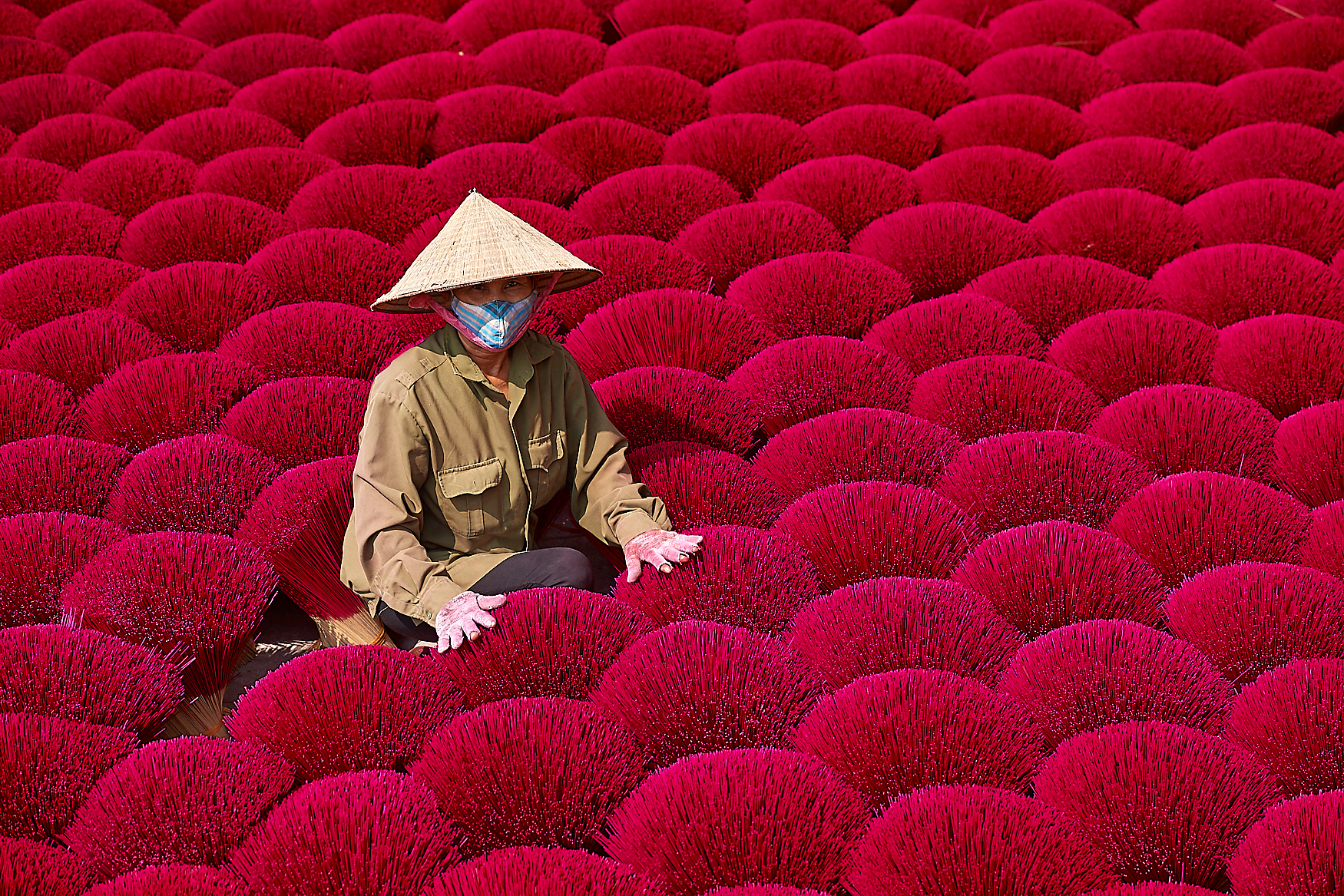 There are few sights more beautiful than a field of incense sticks