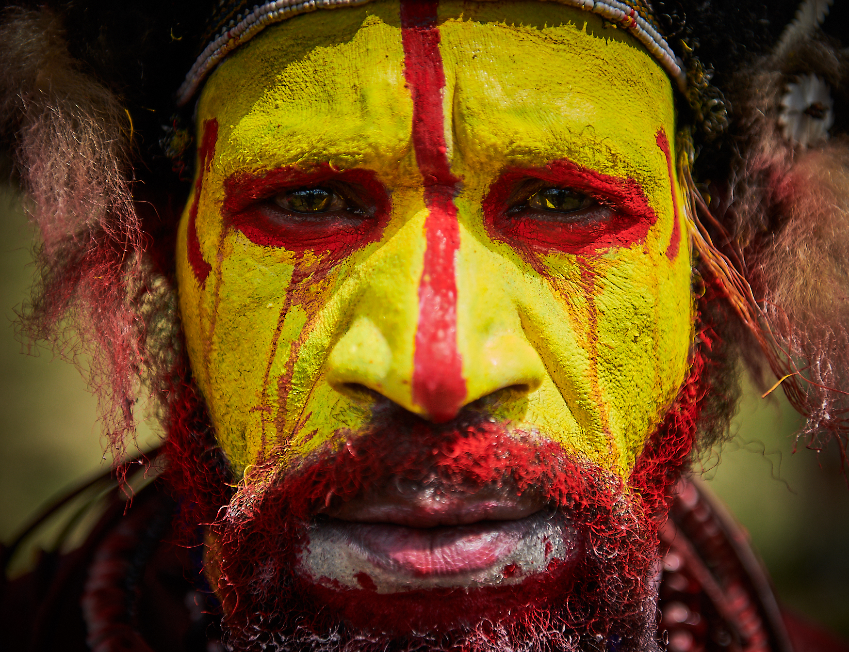 huli wigman warrior, papua new guinea