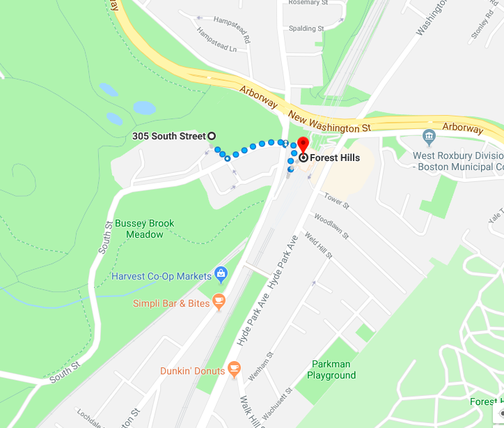 5. Arnold Arboretum - A 3 minute walk from Forest Hills T Stop. You have to work hard to find little sections of woods but it's possible. If you are feeling energetic go all the way through the Arboretum to the Allandale woods.https://www.arboretum.harvard.edu/