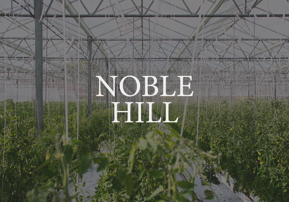 Noble Hill Page Header.jpg