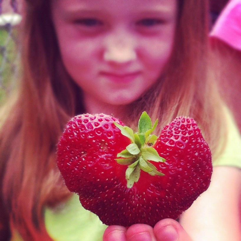 fruitlove.jpg