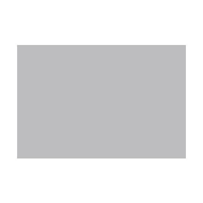 modeloespecial-logo-Grey.png