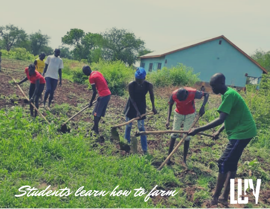 WATCH VIDEO     of our high school students at New Life Ministry (along the border of Darfur) last week were preparing the land for cultivation at the NLM farm