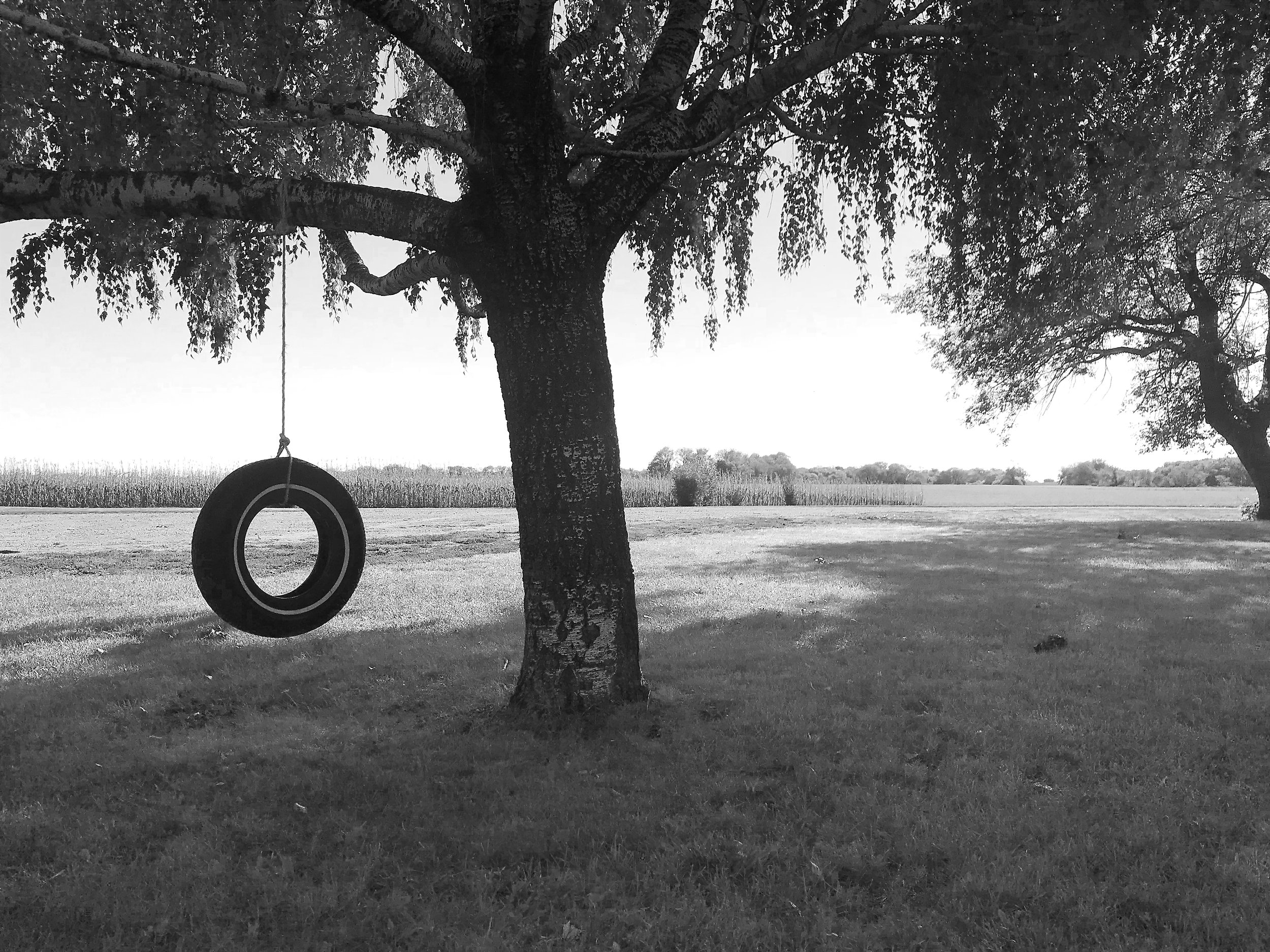 """LIVE INSPIRED - A number of years ago, I began public speaking about coping with change and other inspirational topics. Many mornings I draw inspiration from the tire swing in my front yard, I post inspirational messages called """"weather reports"""" to my Instagram as a way to start the day with a positive mindset."""