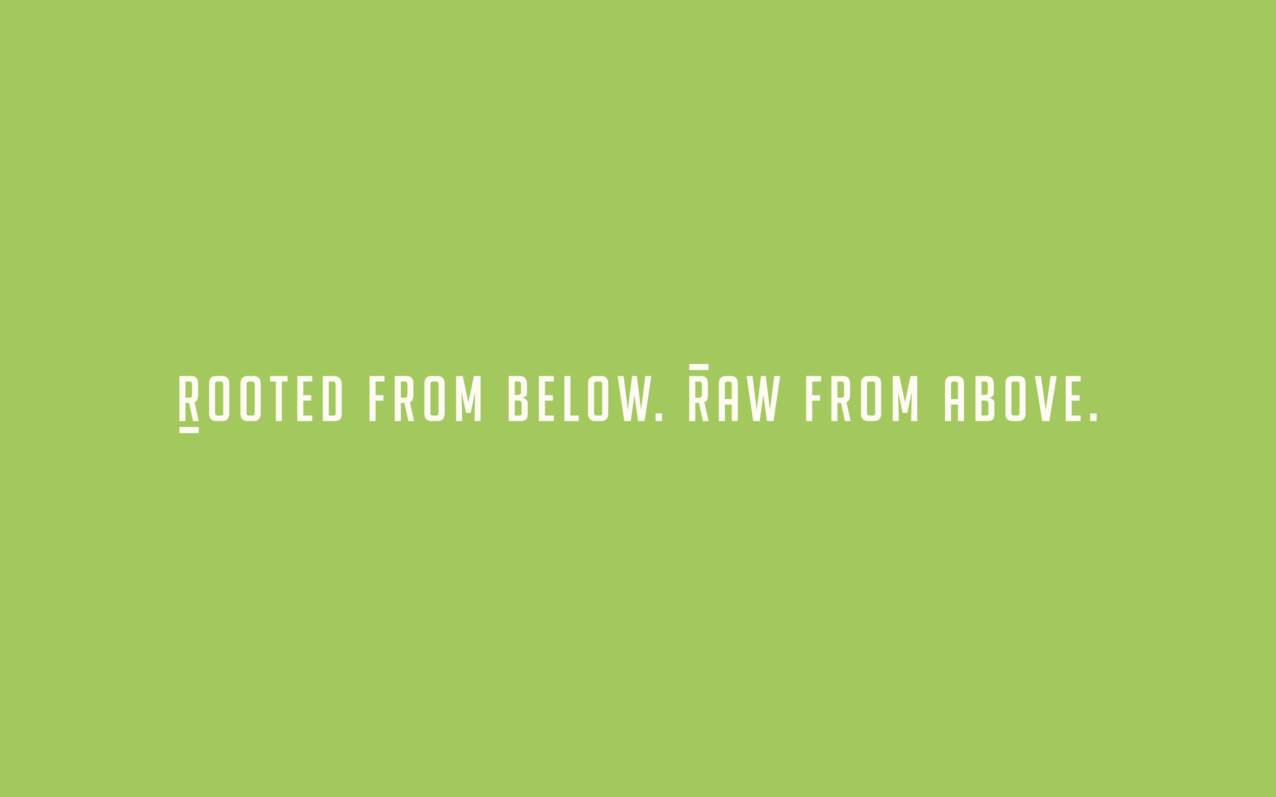 rooted raw3.jpg