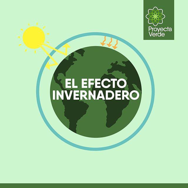 El efecto invernadero es un proceso esencial para el desarrollo de la vida en la Tierra🌏; Pero las emisiones generadas por nuestras actividades diarias resultan en un calentamiento acelerado y preocupante que afecta el desarrollo de quienes la habitamos.