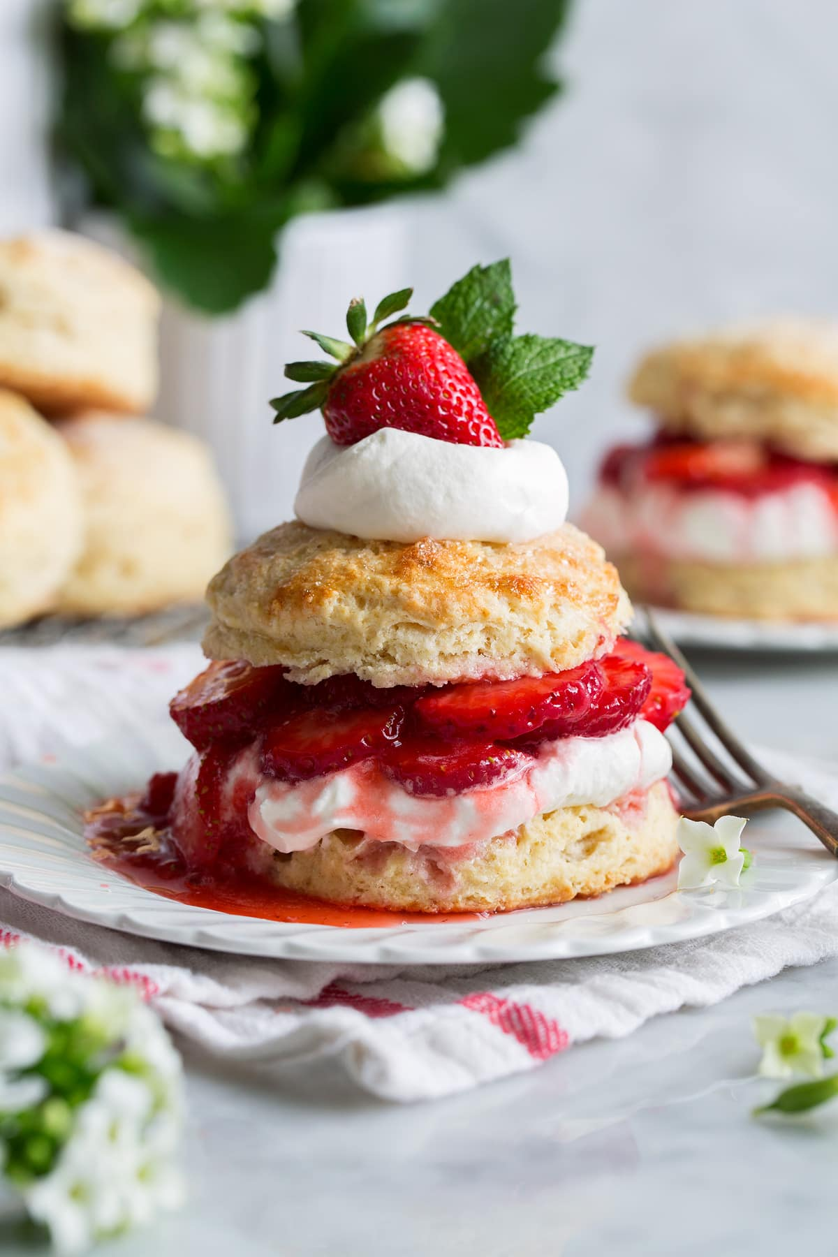 strawberry-shortcake-02.jpg