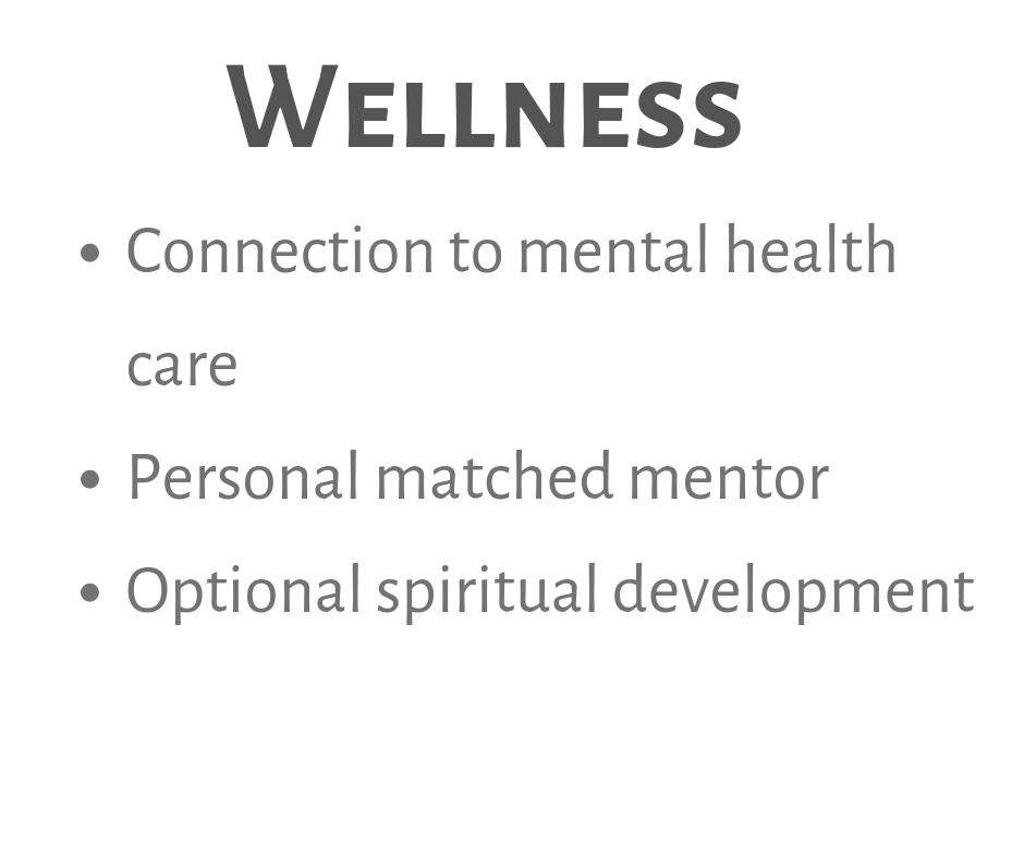Wellness-3.png