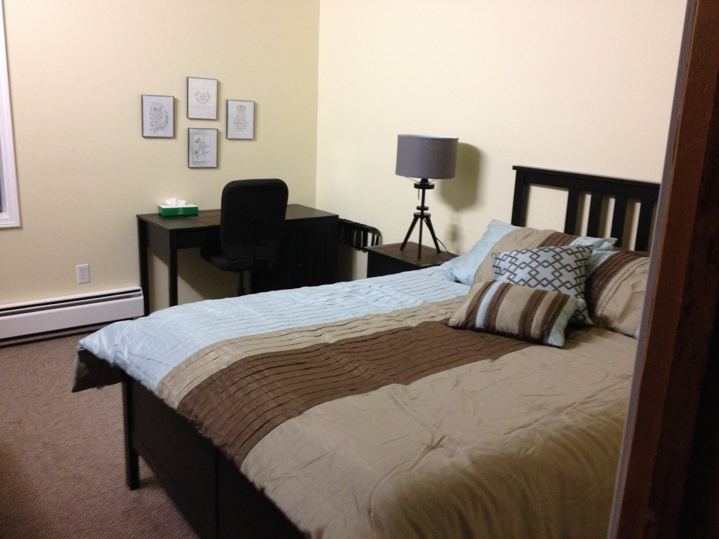 Room 101 - Special Guest Room - Queen bed and desk