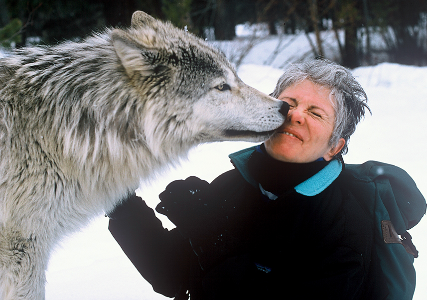 Sandy kissed by wolf