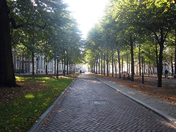 Tree lined street that leads to the Escher Museum in The Hague