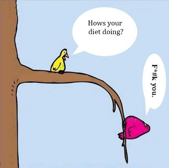How's your diet doing? F*#k you/