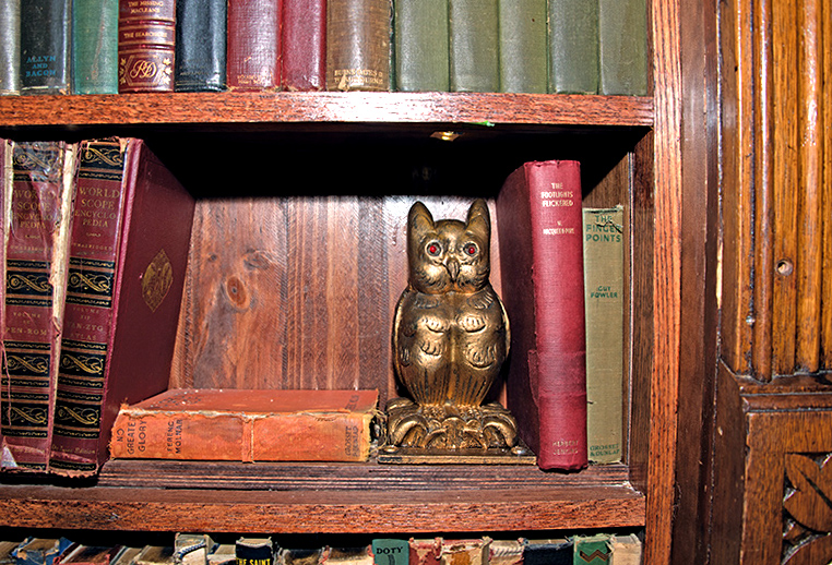 "Here is the owl in the bookcase of The Magic Castle. You must say ""Open Sesame."" to open the door."