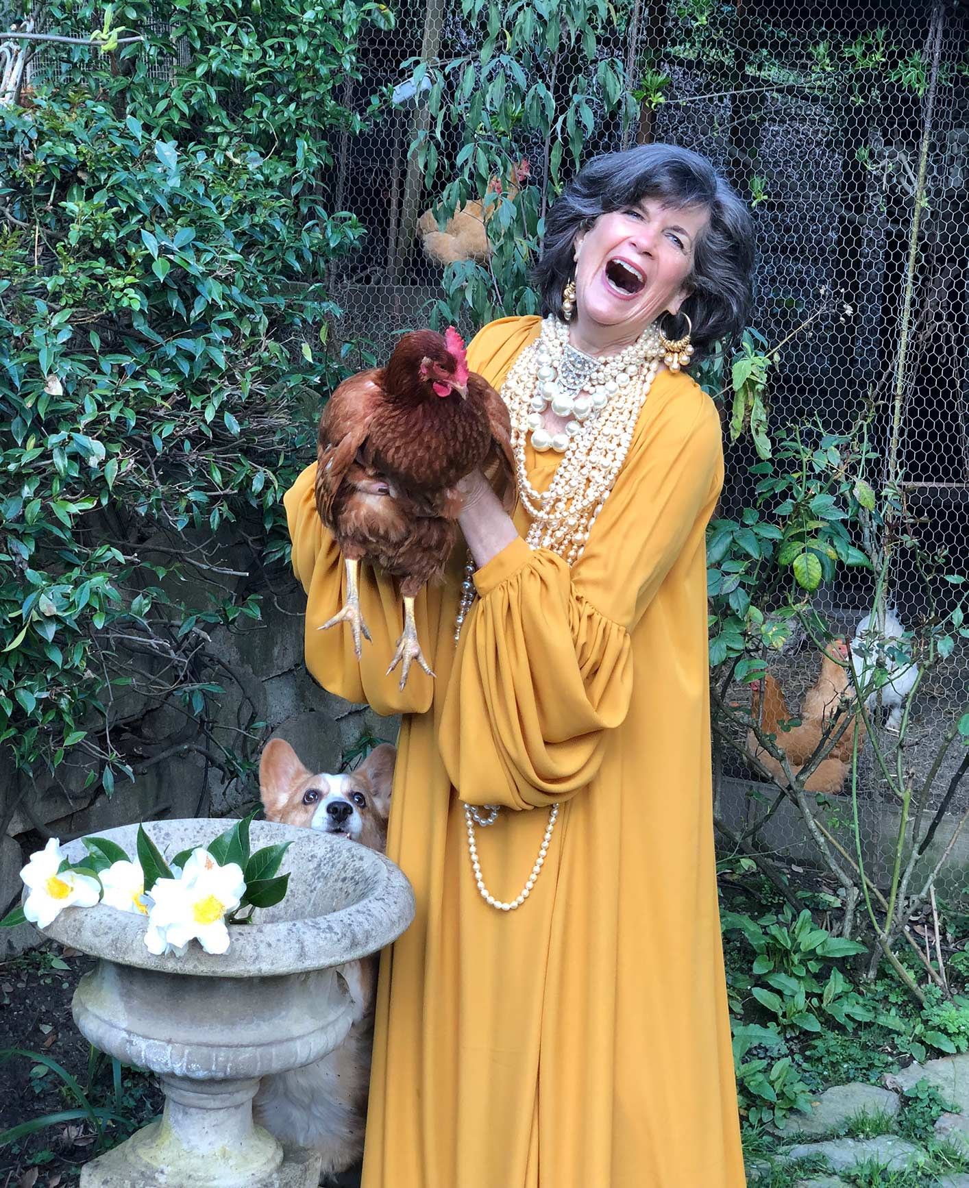 The contessa has a blog where you can see her grand looks, her pig, hens, dogs, garden and her husband, The Italian. Ciao!