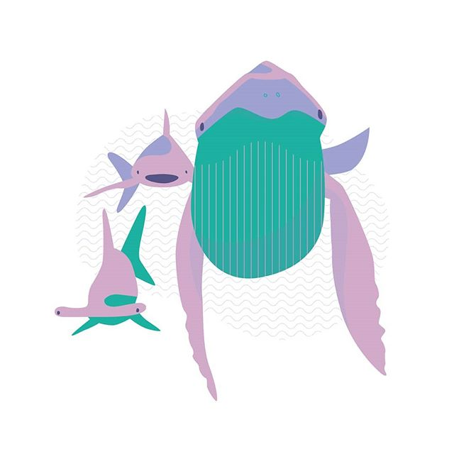 friendly giants.  #illustration #vector #friendlygiants #whale #sharks #hammerhead #sea #ocean #spotillustration