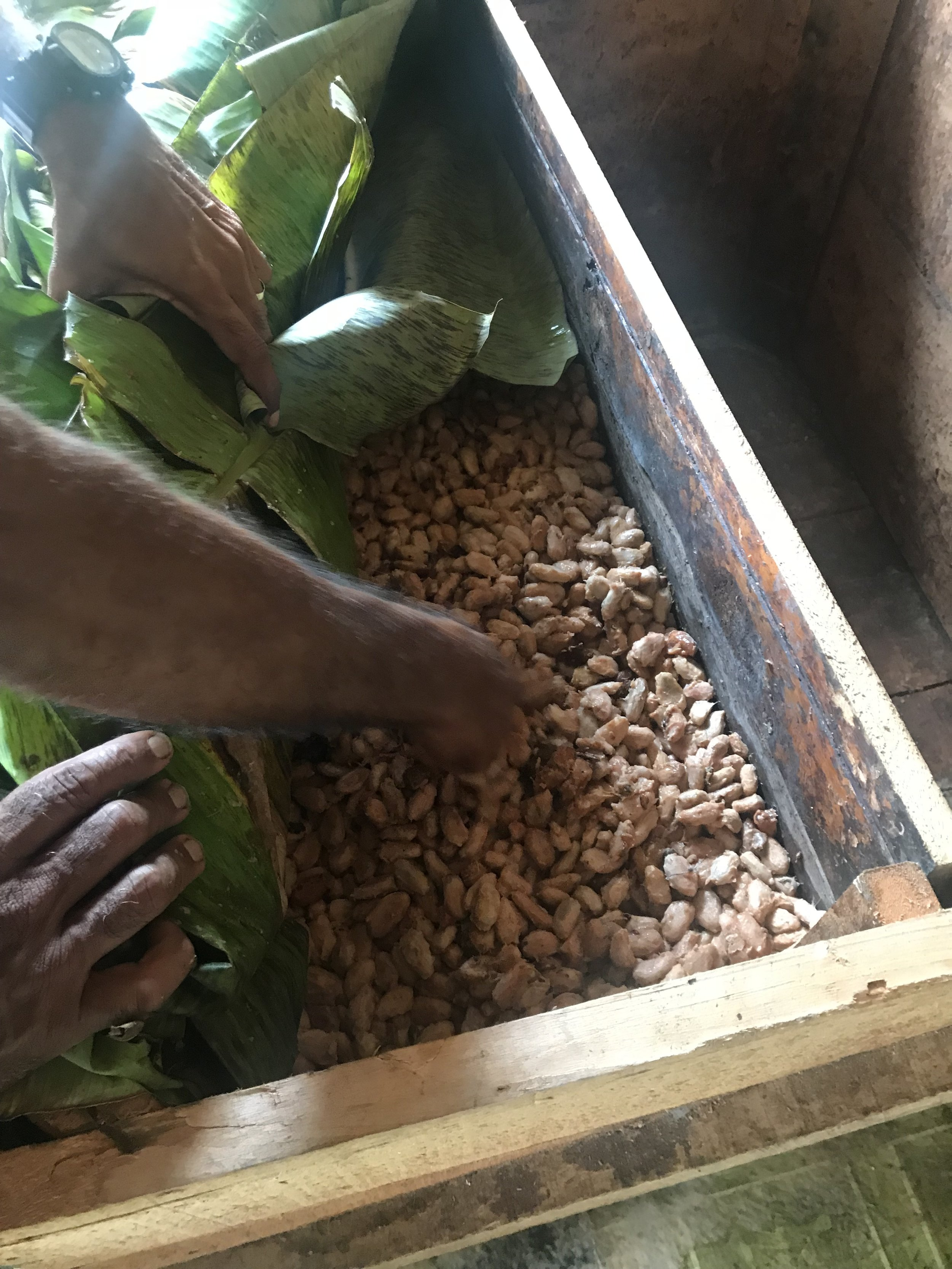 Natural fermentation of our beans