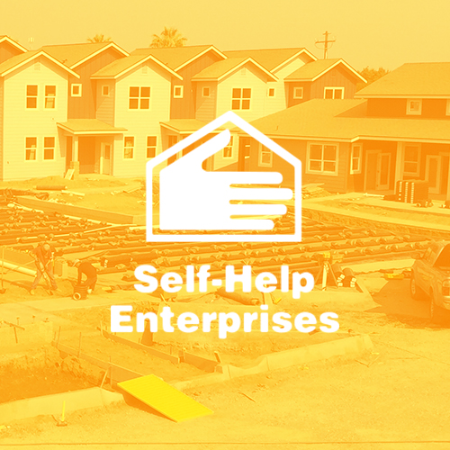 self-help-enterprises-report-qubo-creative