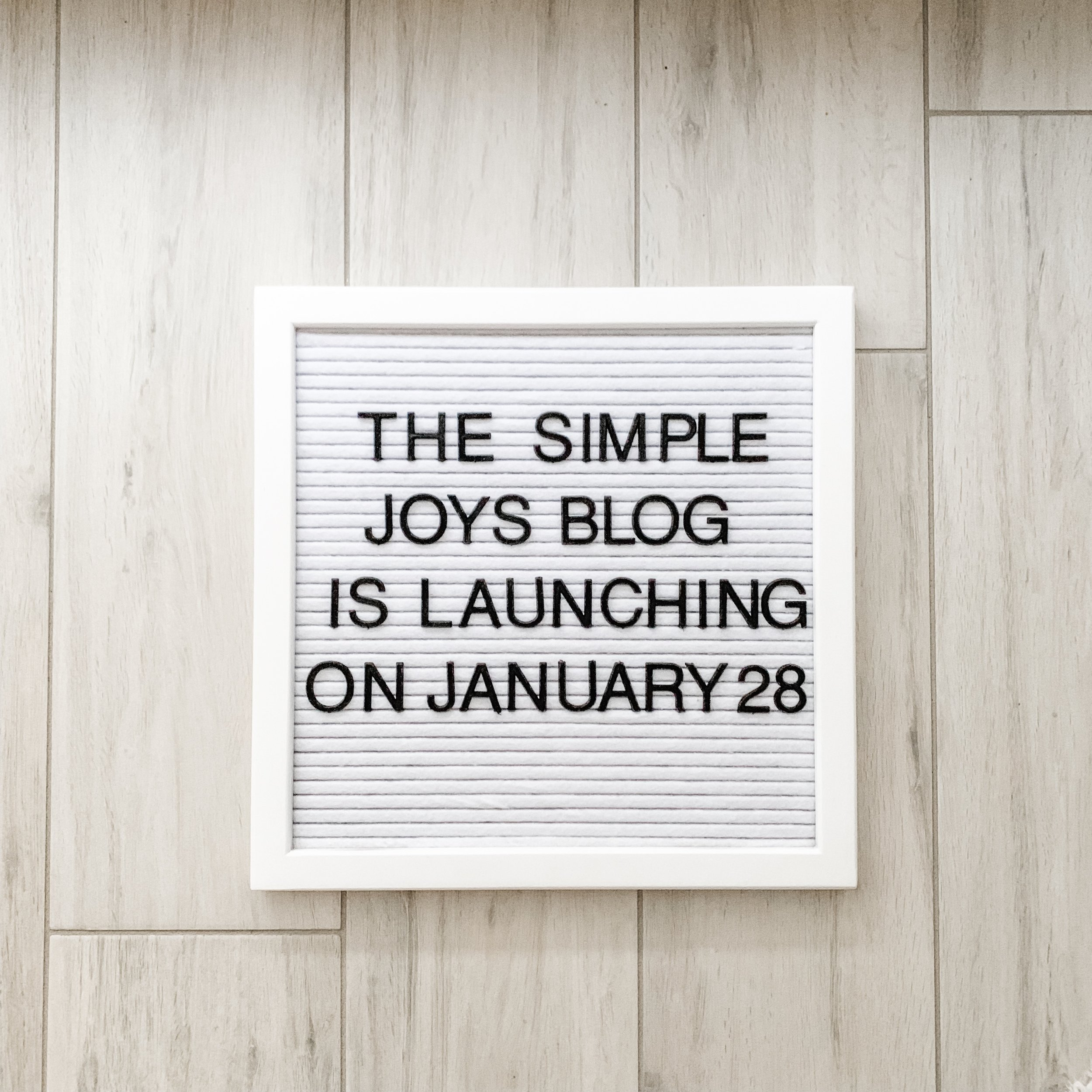 In mid-January, I announced that I was launching the blog!