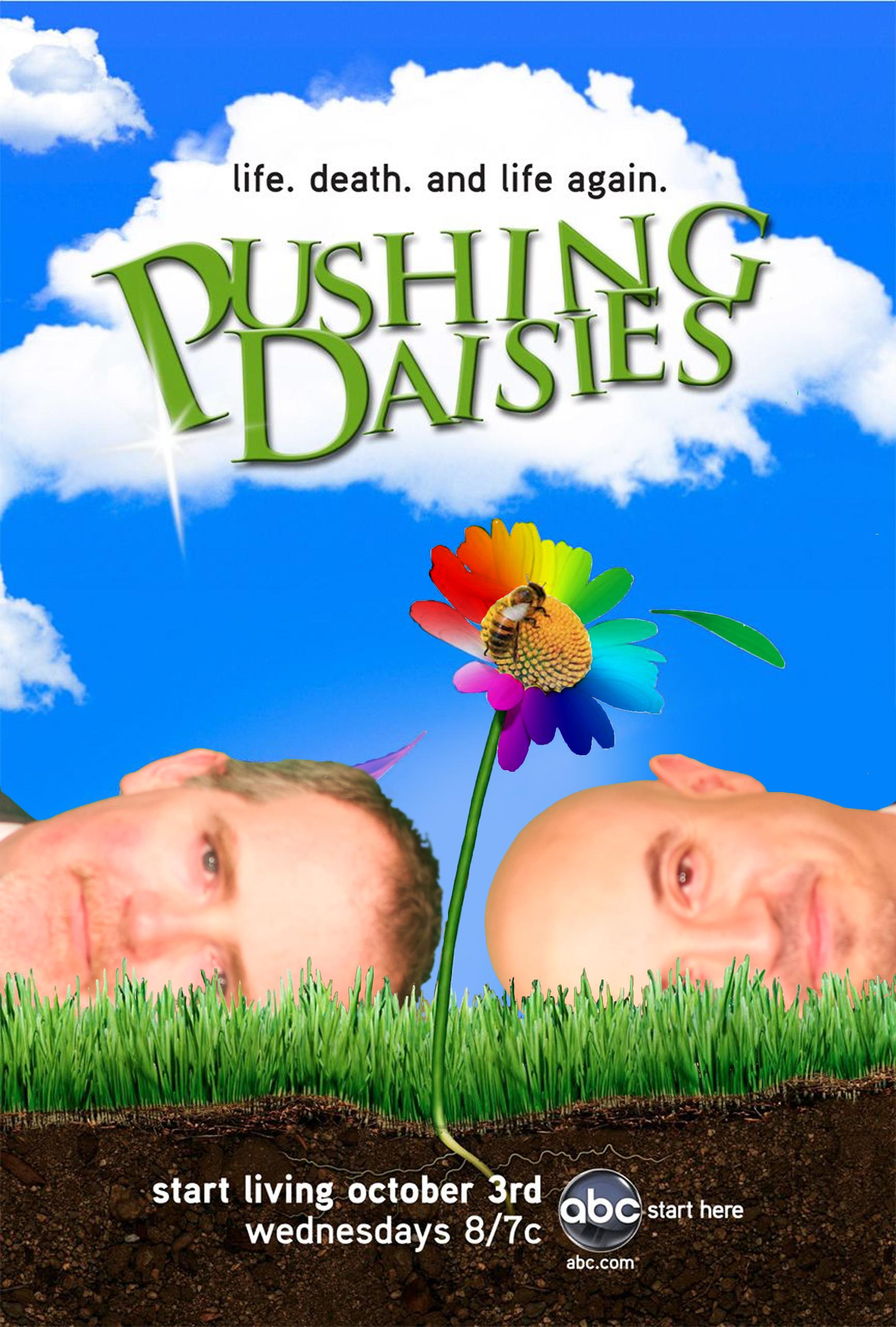 PushingDaisiesRainbow.jpg