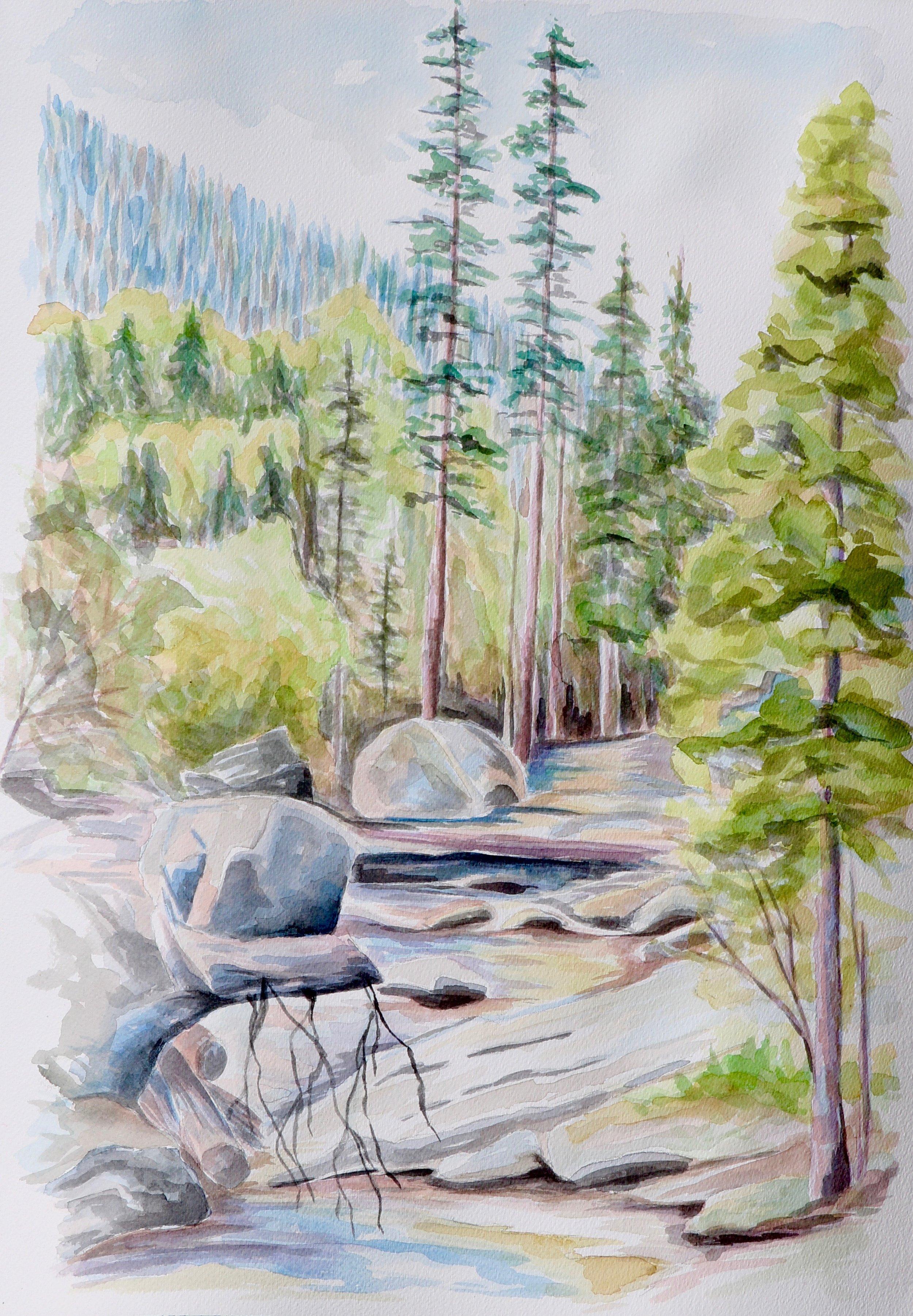 Upper Copeland Falls - Rocky Mountain National Park, CO