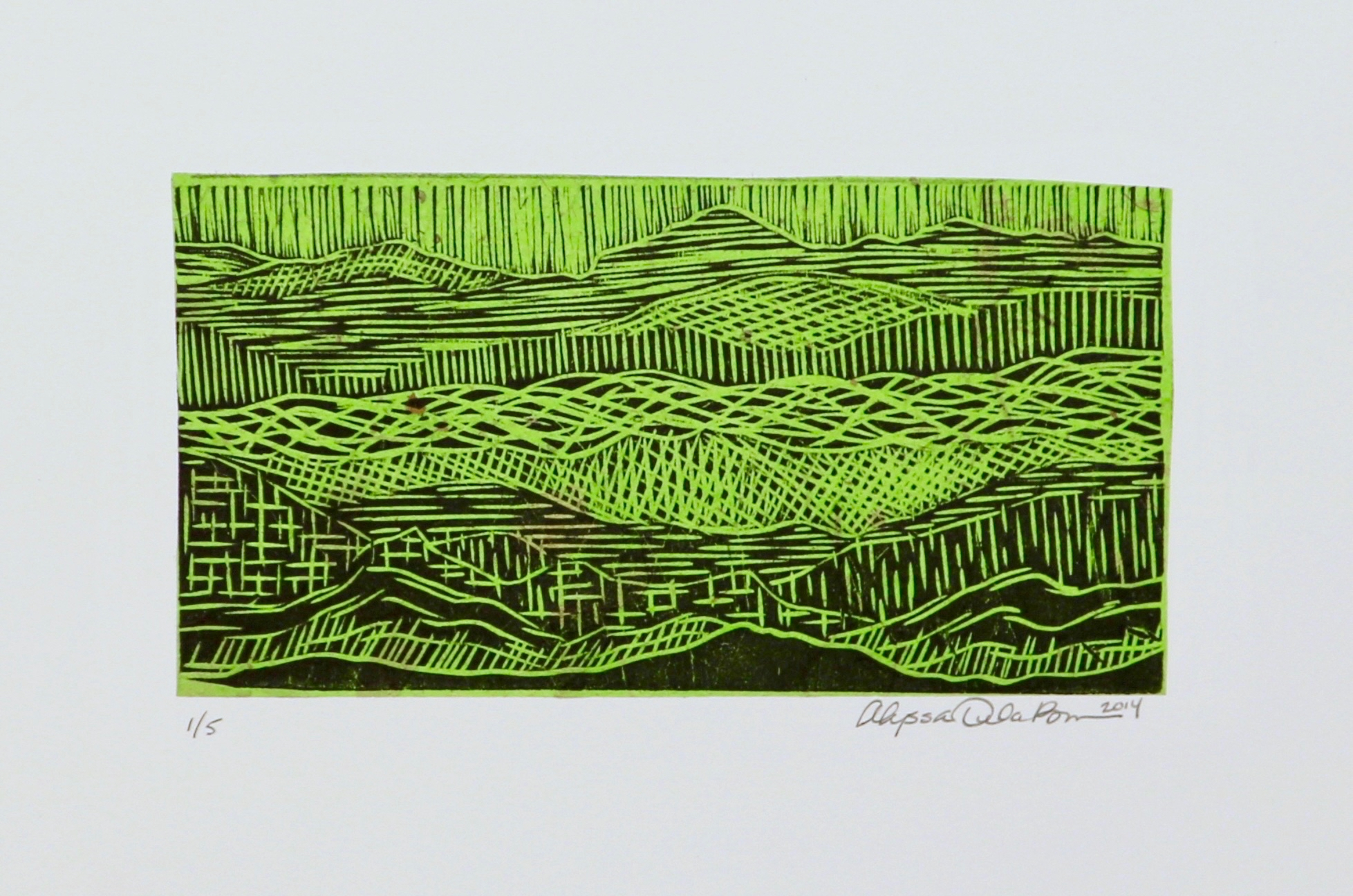 Mountain Waves, Roll and Ripple