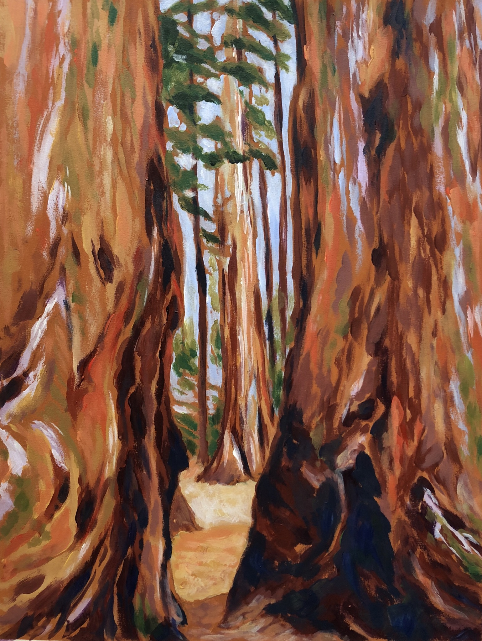 Giant Forest - Sequoia National Park - Acrylic on Colorfix Paper