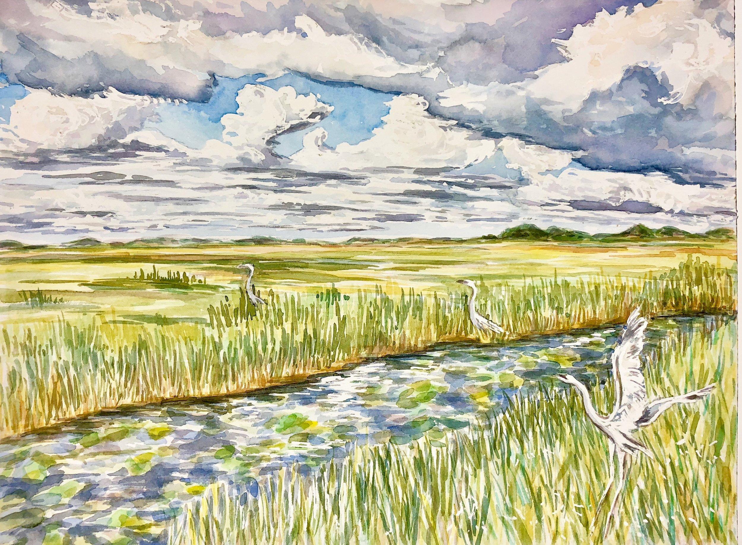 Trip of Cranes, Everglades National Park - watercolor