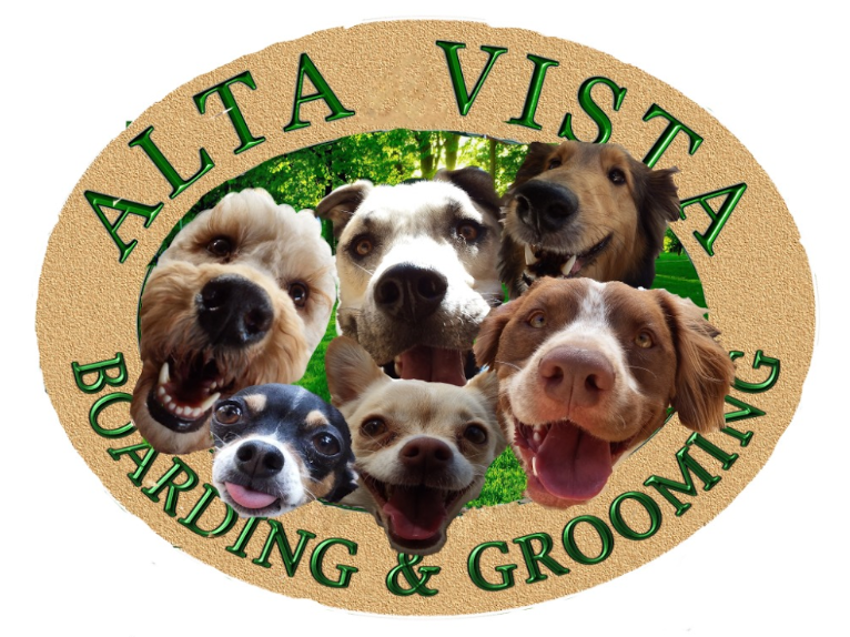 Alta Vista Boarding - At Alta Vista Pet Boarding & Grooming, we are dedicated exclusively to the care of your pet. Our number one goal is to provide your best friend the ultimate experience during his or her stay while giving you the peace of mind that your pet is safe, healthy and happy.4730 N 7th Ave, Phoenix, AZ 85013 / (602) 265-3198