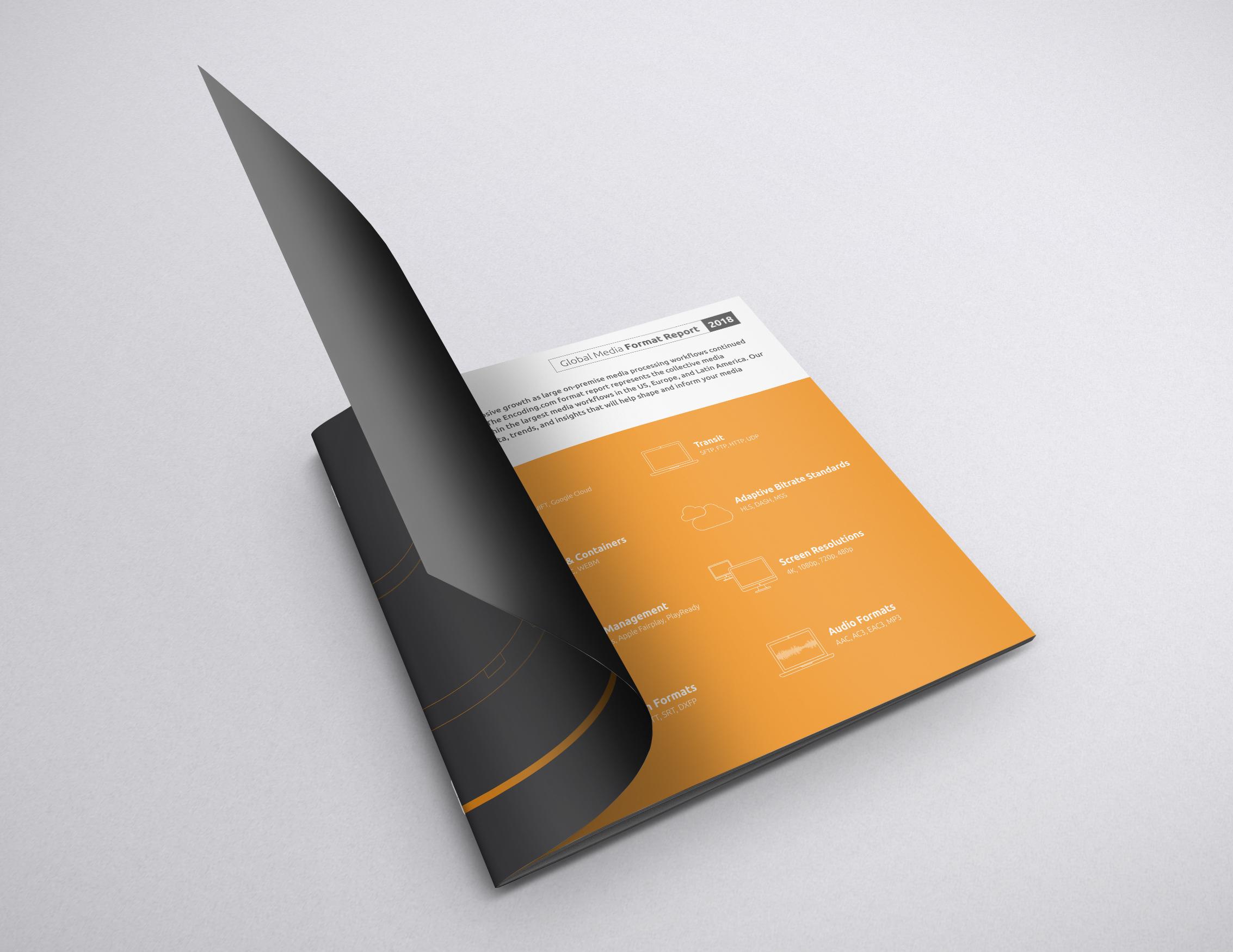 ENC-FormRepMockUp-3.jpg