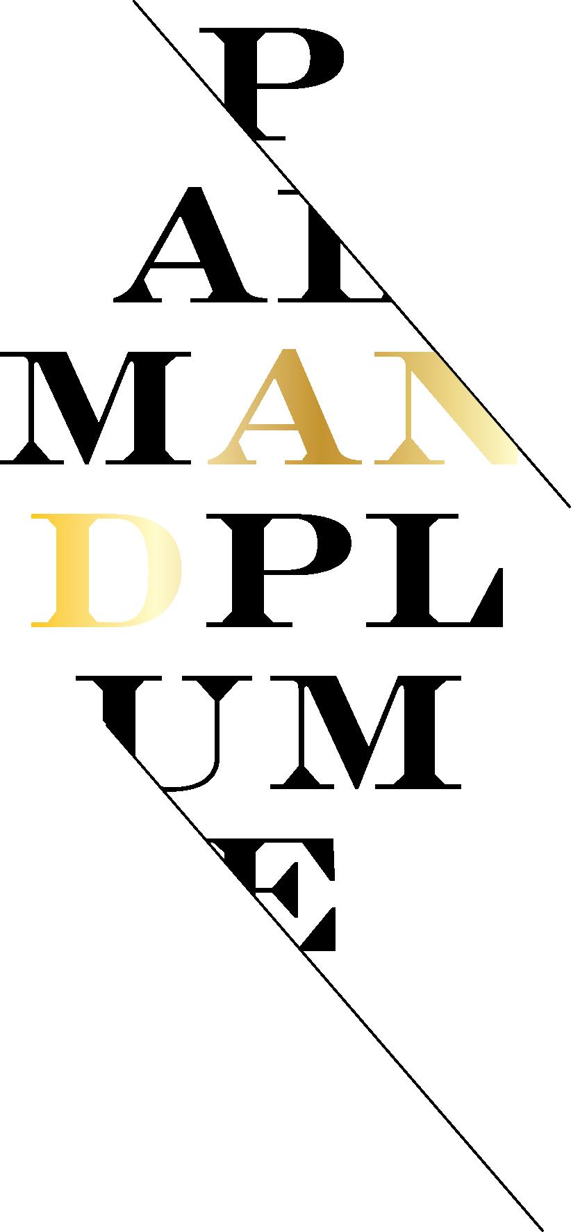 pp-logo-4.png