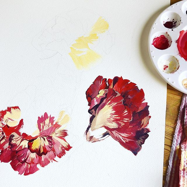 Carnations #progress ! I have several things I'm working on atm, bouncing between pieces gives my brain time to rest and come back to them with fresh eyes. This one's for relaxation. 😊 . #artistsoninstagram #artstagram #originalartwork #paintlife #gouache #holbein #windsornewton  #archespaper #plantstagram #plantlife #artprogress #artprocess #wip #natureaesthetic #floralart #floralillustration #natureillustration #flowerlove #carnation