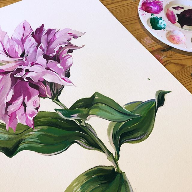 Found this gorgeous rose lily at the store and had to paint it! I'm touching up the carnations and will post both finished pieces soon! Reworking my store atm, my recent botanical art will be for sale. 🌸 . #artistsoninstagram #artstagram #originalartwork #paintlife #gouache #holbein #windsornewton  #archespaper #plantstagram #plantlife #artprogress #artprocess #wip #natureaesthetic #floralart #floralillustration #natureillustration #flowerlove #lily #lilyflower #roselily #wip #progress