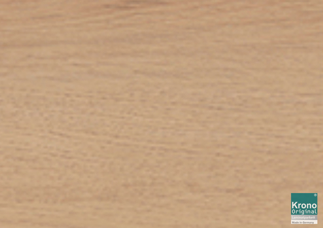 Eggshell Oak