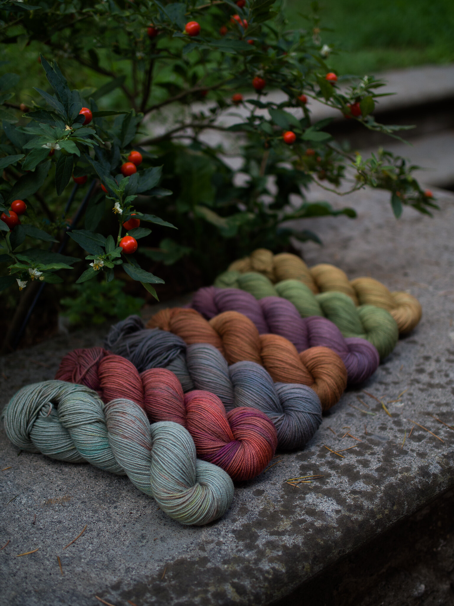Newest yarn, Peruvian -