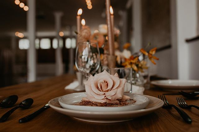When @moniqueserraphotography and @karraleighphoto put thought into every little detail of a shoot, it has to be shared! So so so in love with all the small parts of this shoot that made it so beautiful. Anyone else getting Halloween/moody fall vibes from these pics?!😍🤤⠀ ⠀ Workshop: @passionworkshop_⠀ Florals: @thistleandlaceflorals⠀ Venue: @wilburnstreetstudio⠀ Rentals: @chaserandburk⠀ Cake: @bygiannabakery