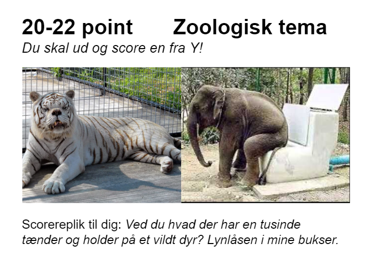 25-28 zoo.PNG