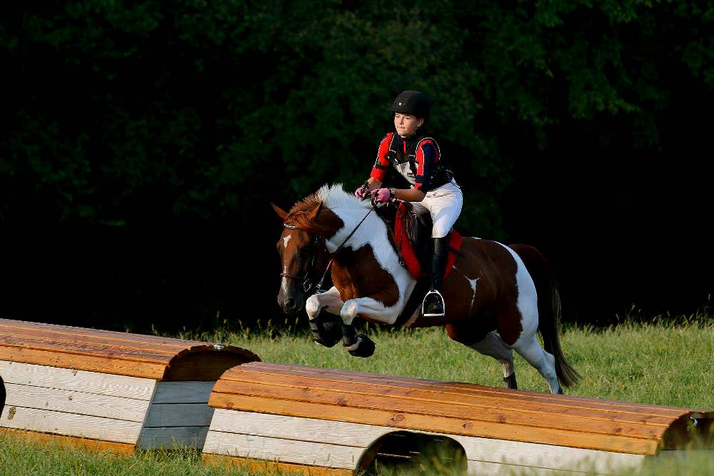 SUPERSTITIOUS FLF - GERMAN RIDING PONY BY PABLITO OUT OF SKIPPIN JACKIE