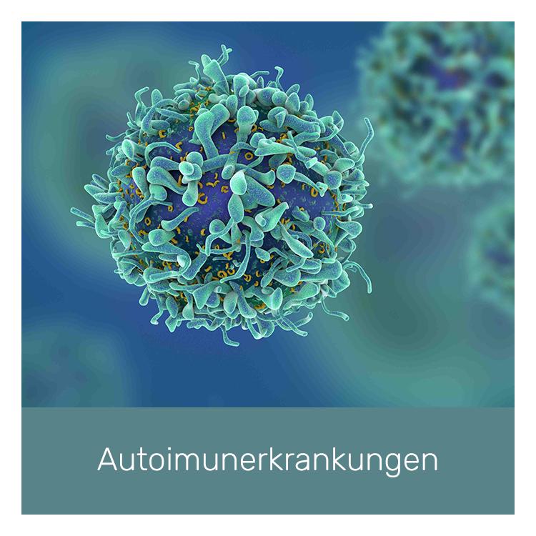 novaderm-autoimunerkrankungen.png